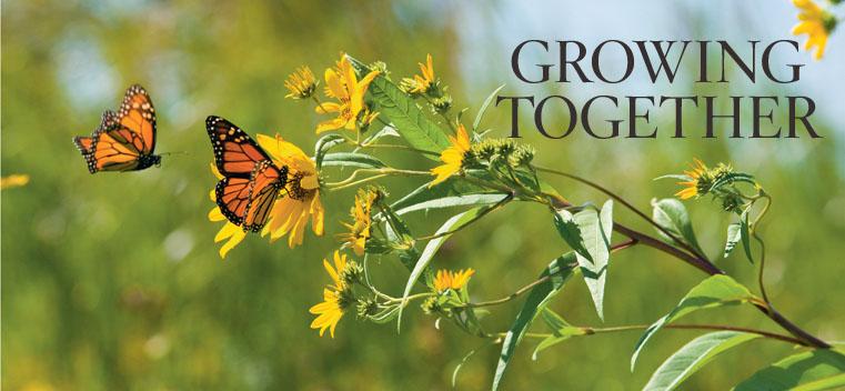 Growing Together Northwestern Magazine Northwestern